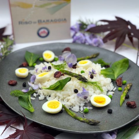 Carnaroli Baraggia rice PDO salad with eggs and fresh vegetables